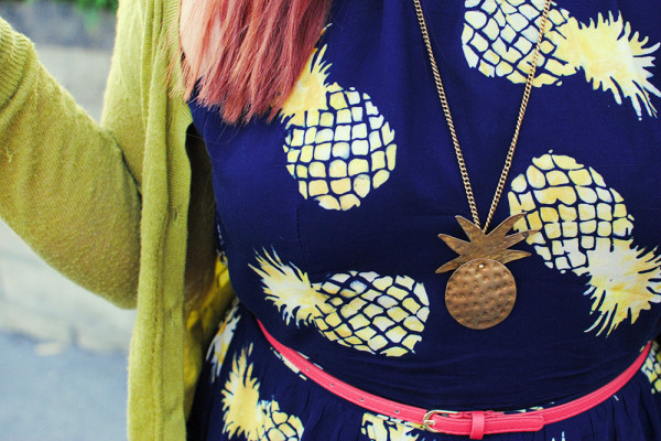 Pineapple Accessories
