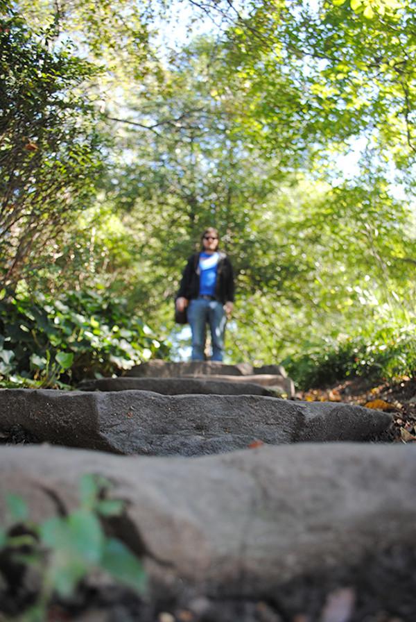 Steps in Central Park
