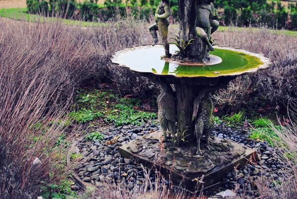 Stoke Rochford Hall Gardens