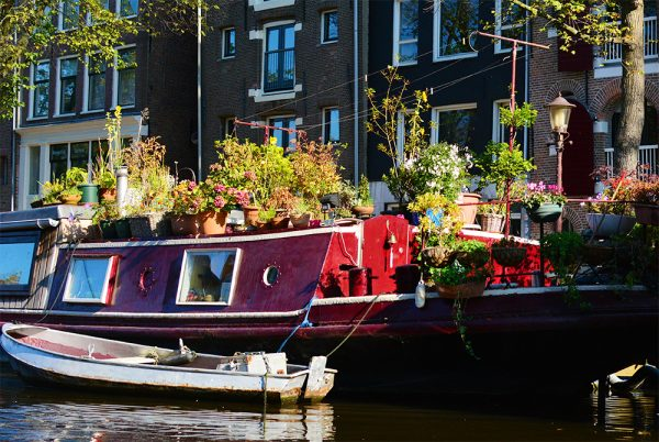 Best Things To Do in Amsterdam - Boat Tour