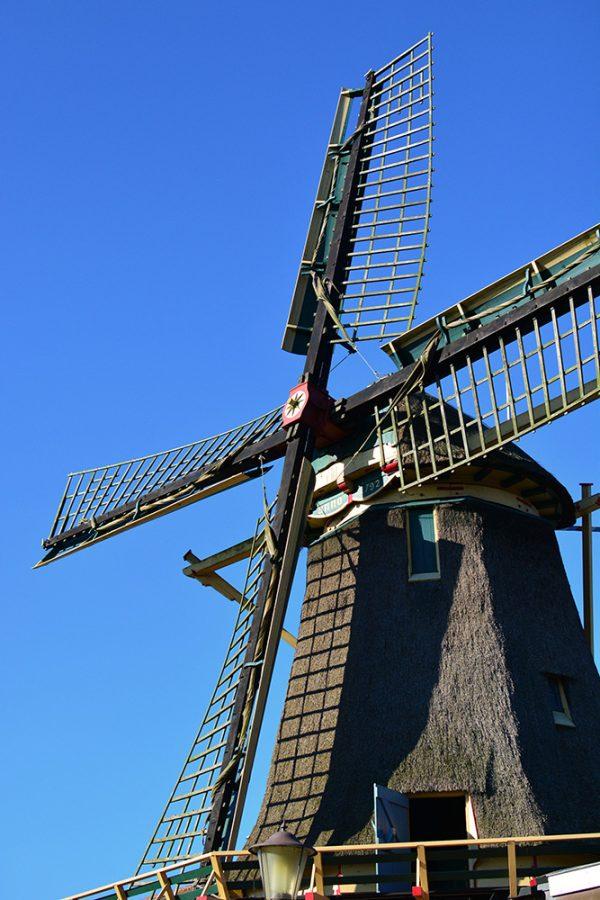 Windmill Amsterdam Noord