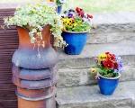 DIY: Chimney Pot Planters